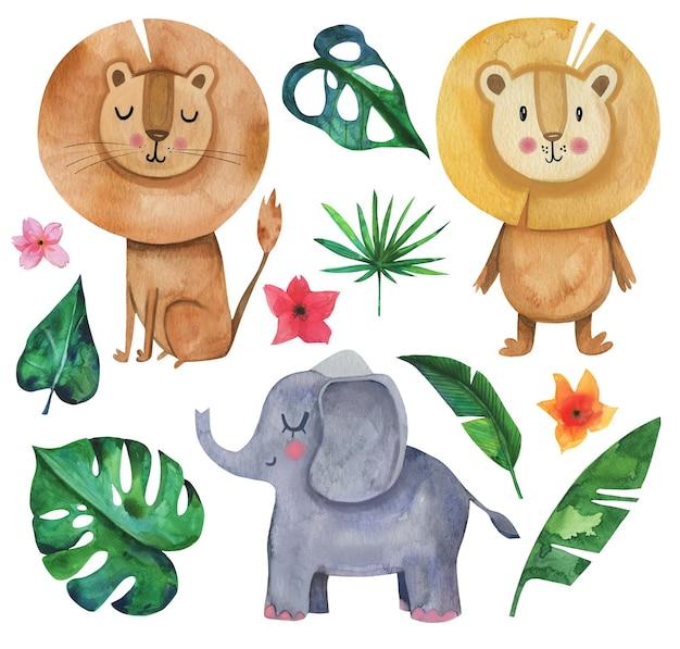 Śliczne akwarela afryka safari ręcznie rysowane zestaw zwierząt