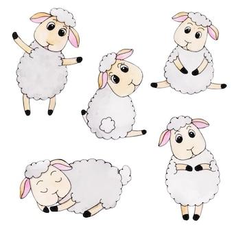 Śliczne akwarela jesienna kolekcja owiec