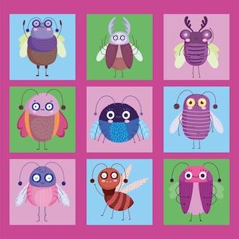 Śliczne błędy owadów zwierząt w stylu cartoon ilustracji