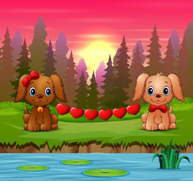 Śliczne dwa psy gryzą serce w lesie