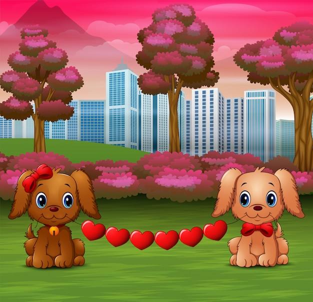 Śliczne dwa psy gryzą serce w parku