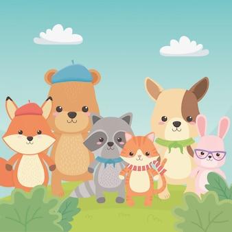 Śliczne i małe zwierzęta w postaciach polowych