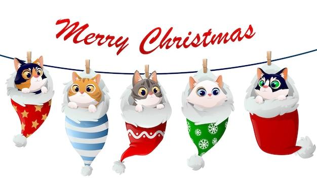 Śliczne kocięta świąteczne wzór w skarpetkach