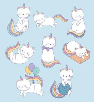 Śliczne koty z tęczowymi ogonami kawaii znaków