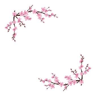 Śliczne kwiaty sakury ramki