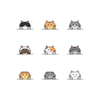 Śliczne łapy kota nad kolekcją kreskówek na ścianie