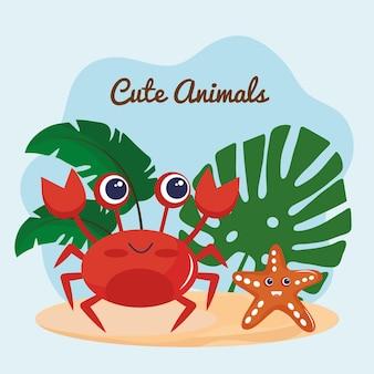 Śliczne małe kraby i rozgwiazdy kawaii postacie