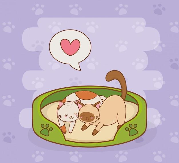 Śliczne małe maskotki kotów