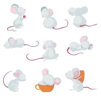Śliczne małe myszy w różnych sytuacjach