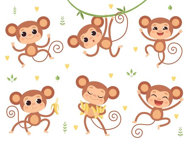 Śliczne małpy dzikie zwierzęta z dżungli, małe małpki grające postacie w pozach akcji