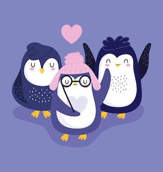 Śliczne pingwiny w ciepłych czapkach i okularach