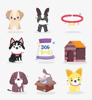 Śliczne psy szczenię jedzenie kołnierz dom zwierzę kreskówka, kolekcja zwierząt domowych