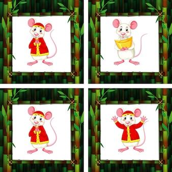 Śliczne szczury w czterech różnych bambusowych ramach