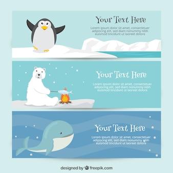 Śliczne transparenty z zwierząt