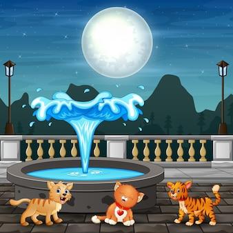 Śliczne trzy koty siedzące w pobliżu fontanny