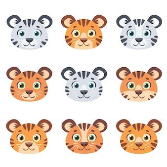 Śliczne twarze tygrysów ustawione