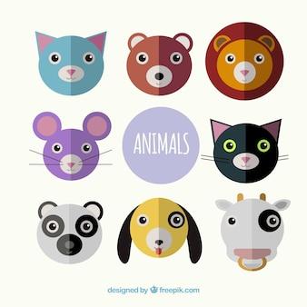 Śliczne twarze zwierząt o płaskim wzornictwie