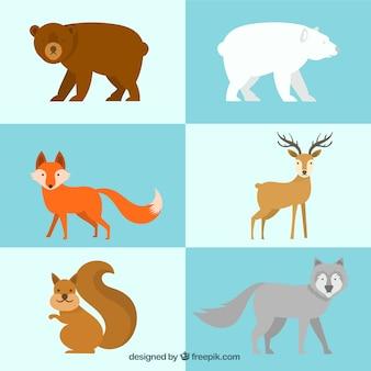 Śliczne zimowe zwierzęta w płaskiej konstrukcji