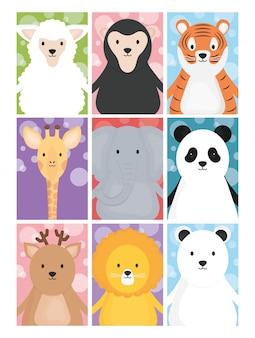 Śliczne zwierzęta owiec żyrafa tygrys lew jeleń niedźwiedź słoń i panda