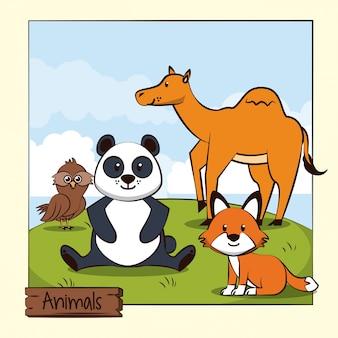 Śliczne zwierzęta w dżungli