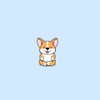 Ślicznego corgi psa ćwiczy joga