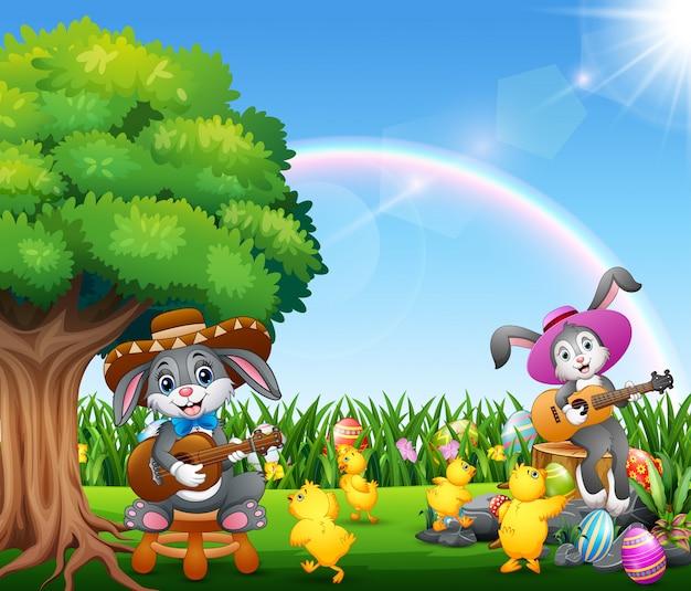Śliczni króliki relaksują bawić się gitarę i otaczają kurczątkami