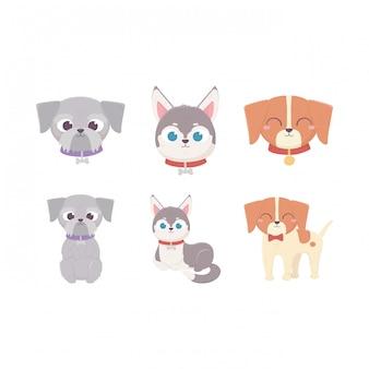 Śliczni psy kłama stać i siedzą domowego kreskówki zwierzęcia, zwierzęta domowe