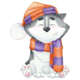 Śliczny akwarelowy husky w szaliku i kapeluszu.