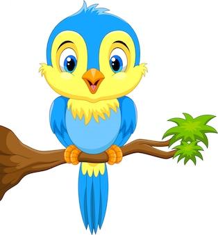 Śliczny błękitny ptak na gałąź
