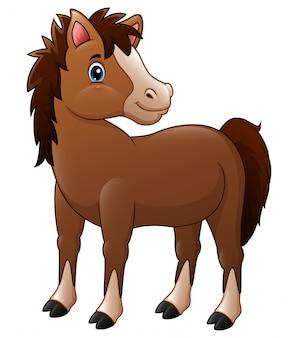 Śliczny brązowy koń dziecka
