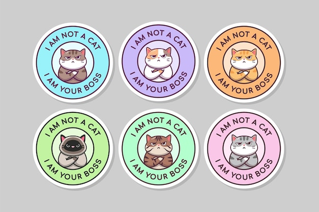 Śliczny cytat szefa kota kawaii