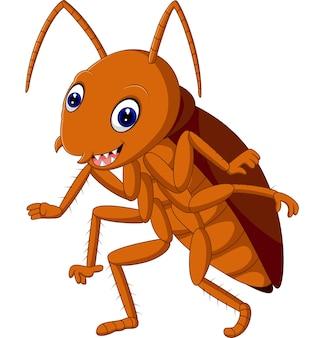 Śliczny karaluch