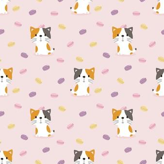 Śliczny kot i słodki makaronik bez szwu
