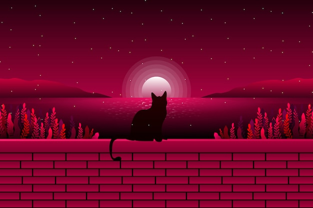 Śliczny kot patrzeje widok na morze i gwiaździstej nocy krajobraz
