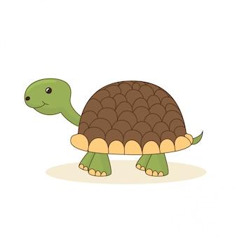 Śliczny kreskówka żółw odizolowywający na bielu