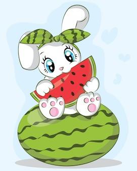 Śliczny królik je arbuza
