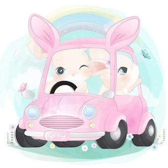 Śliczny mały królik jedzie samochód
