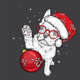 Śliczny pies w świątecznej czapce