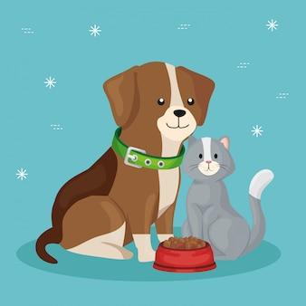 Śliczny pies z kotem i naczynia jedzeniem