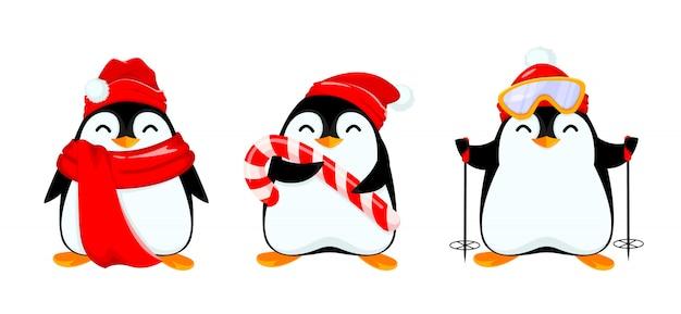 Śliczny pingwin, zestaw trzech poz,
