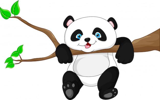 Śliczny śmieszny dziecko pandy obwieszenie na drzewie