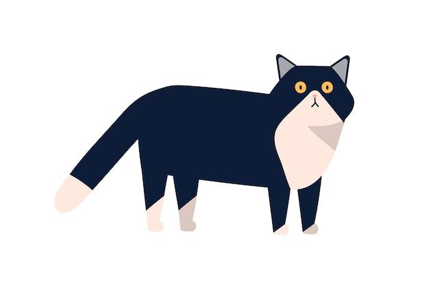 Śliczny ssak zwierząt domowych wektor ilustracja płaskie. ładny czarno-biały kot stojący na białym tle. kolorowe kreskówki pieścić spaceru.