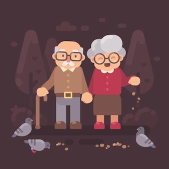 Śliczny stary pary odprowadzenie w karmionych gołębiach i parku. płaskie ilustracja dziadków