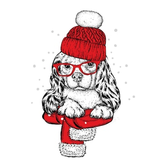 Śliczny szczeniak w czapce zimowej. boże narodzenie.