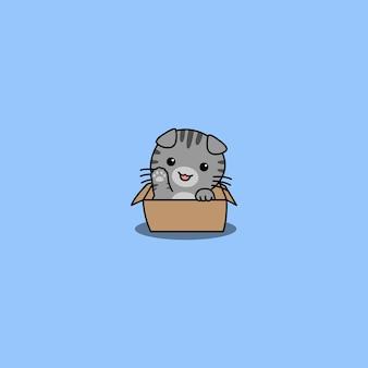 Śliczny szkocki zwisłouchy kot macha łapą w pudełkowej kreskówce