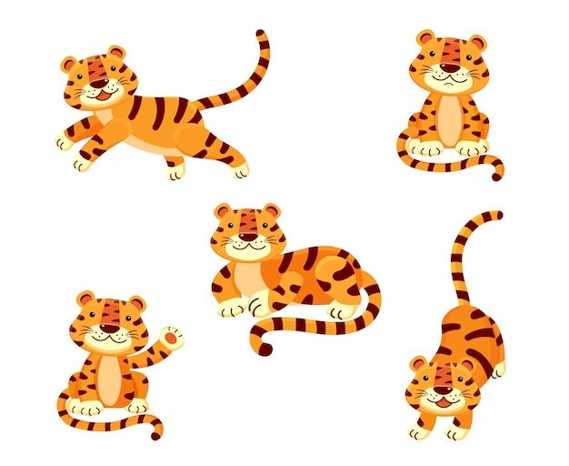Śliczny zestaw ilustracji tygrysa w różnych pozach na białym tle