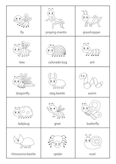 Śliczny zestaw owadów z imionami w języku angielskim.