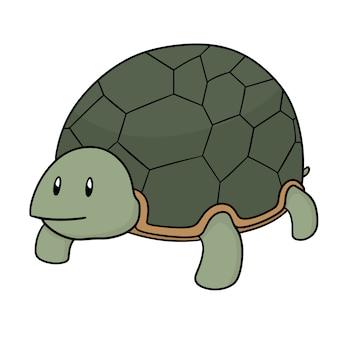 Śliczny żółw