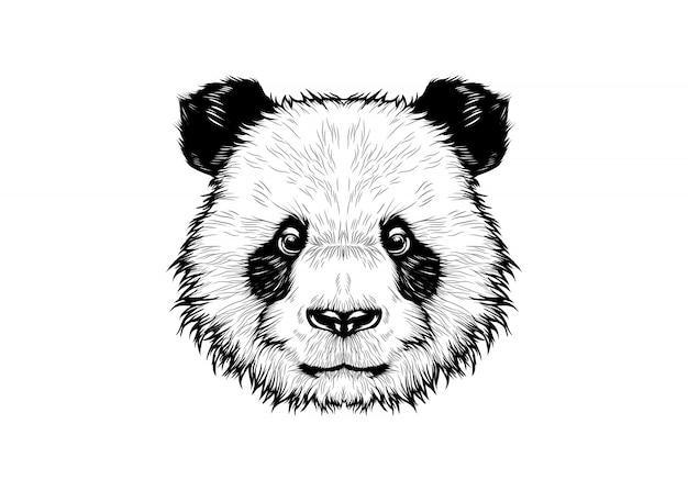 Słodka głowa pandy