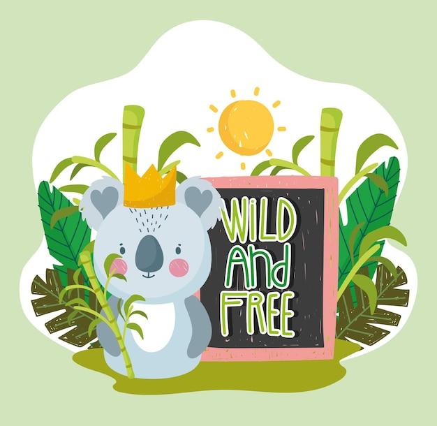 Słodka koala z dżungli